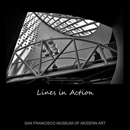 IMAGES FROM SAN FRANCISCO MUSEUM OF MODERN ART