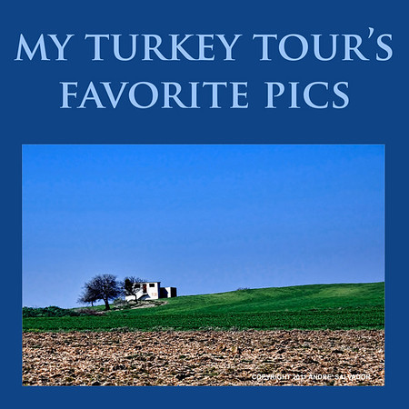 MY TURKEY TOUR'S FAVORITE PICS