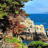 It was landscape artist Francis McComas (1875-1938) who described Point Lobos as 'The Greatest Meeting of Land and Water in the World', a description that many of the today's visitors would agree with.