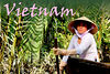 Travel: Vietnam : 4 galleries with 117 photos