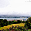 A view of Otago Harbor from the south end of Jubilee park.