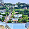 A view of Baldwin Street from our bus. The steepest part is near the top and we were not allowed to go up and take pictures to protect the privacy of the residents.  Guinness officially recognizes Baldwin Street as the world's steepest street at a 35% grade.